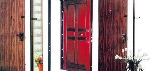 Сучасні залізні двері