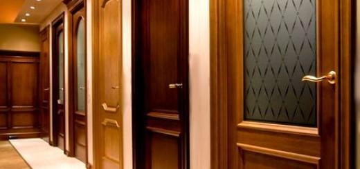 вибор міжкімнатних дверей