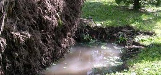 Грунтові води